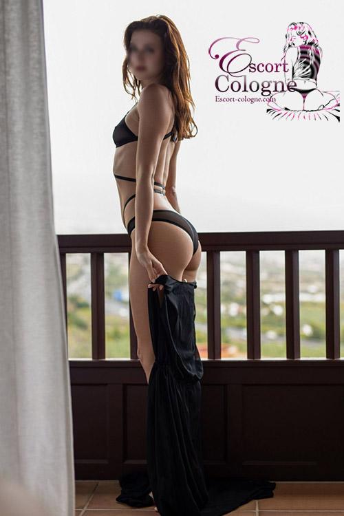Erotic Sex Companion